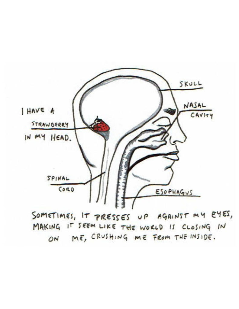 """Page 12: A rough diagram of the inside of a human head in profile takes up most of the page. The skull, nasal cavity, esophagus, and spinal cord are labelled. At the back of the head, in the hollow where the brain should be, is a small strawberry, and its label reads """"I have a strawberry in my head."""" """"Sometimes, it presses up against my eyes, making it seem like the world is closing in on me, crushing me from the inside."""""""