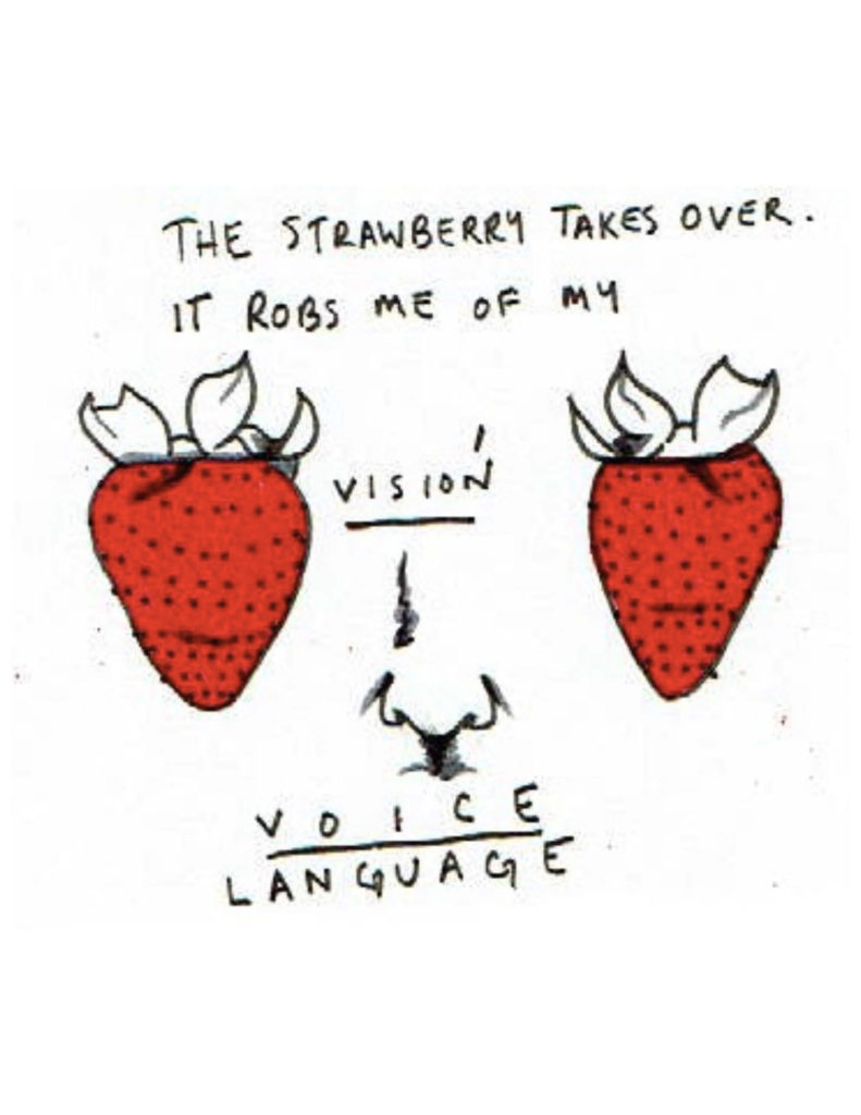 "Page 13: ""The strawberry takes over. It robs me of my vision, voice, language."" Two strawberries flank a nose, with the word vision over the nose and the words voice and language beneath it."