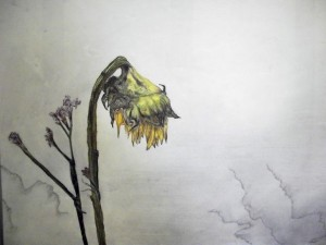 Ralph Cumbers - Gardening, Of Sorts